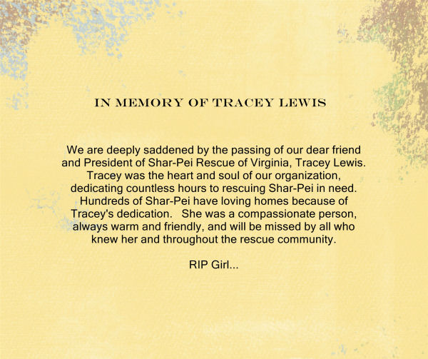 In Memory of Tracey